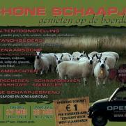 Schone Schaapjes 2012 Staden