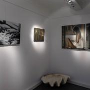 XPO Kunstatelier Via Naturae Oostende 2014